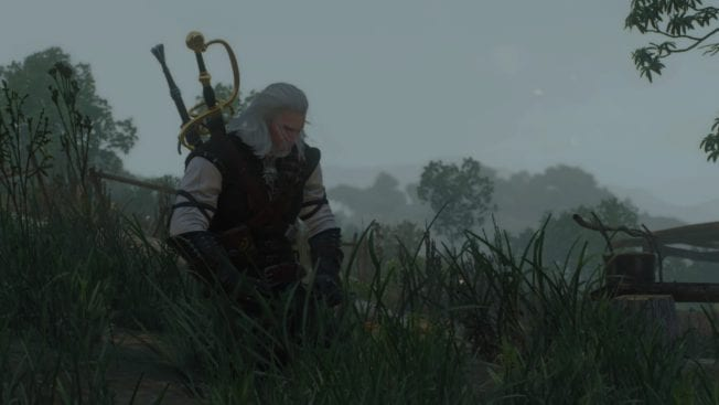 The Witcher 3: Blood and Wine Meditation