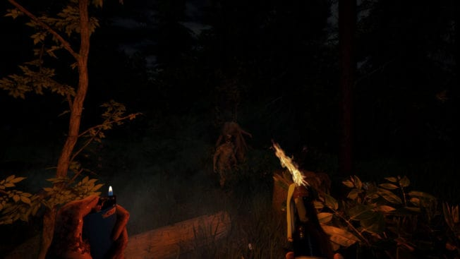 The Forest Nacht