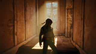 Assassin's Creed Unity Arno Licht