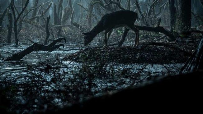 The Witcher Netflix-Serie
