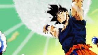 Basis-Goku und -Vegeta Dragon Ball FighterZ
