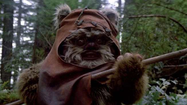 Ewoks Star Wars