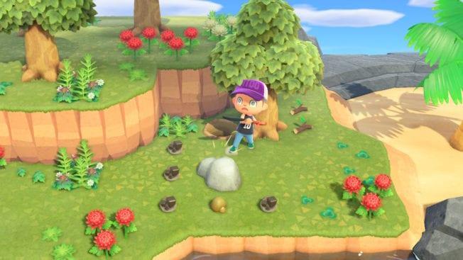 Animal Crossing: New Horizons Graben