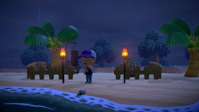 Animal Crossing: New Horizons Strand