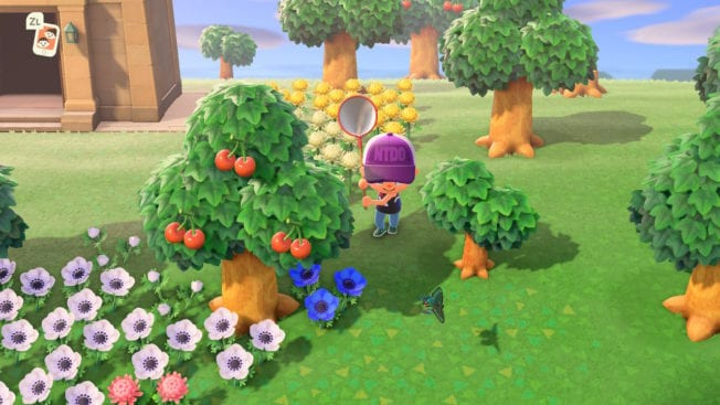 Animal Crossing: New Horizons Wald