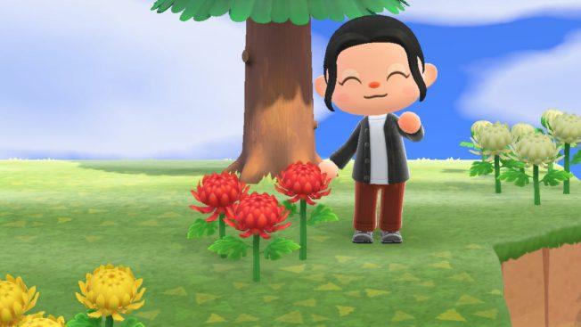 Animal Crossing New Horizons Blumen kreuzen