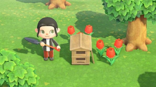 Tulpen sind eine der 8 Blumenarten in Animal Crossing: New Horizons.