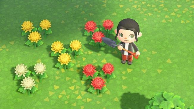Animal Crossing New Horizons Blumen X-Form