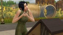 Die Sims 4 Nachhaltig leben Insekten