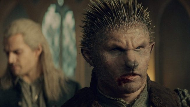The Witcher Netflix Duny Igel
