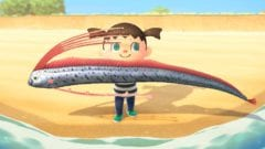 Animal Crossing New Horizons Insekten Fische Mai