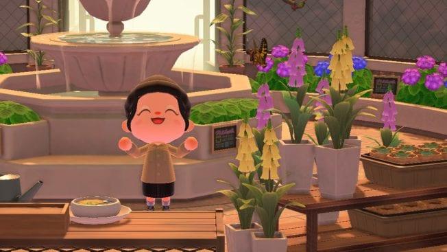 Animal Crossing New Horizons Insektikus-Turnier