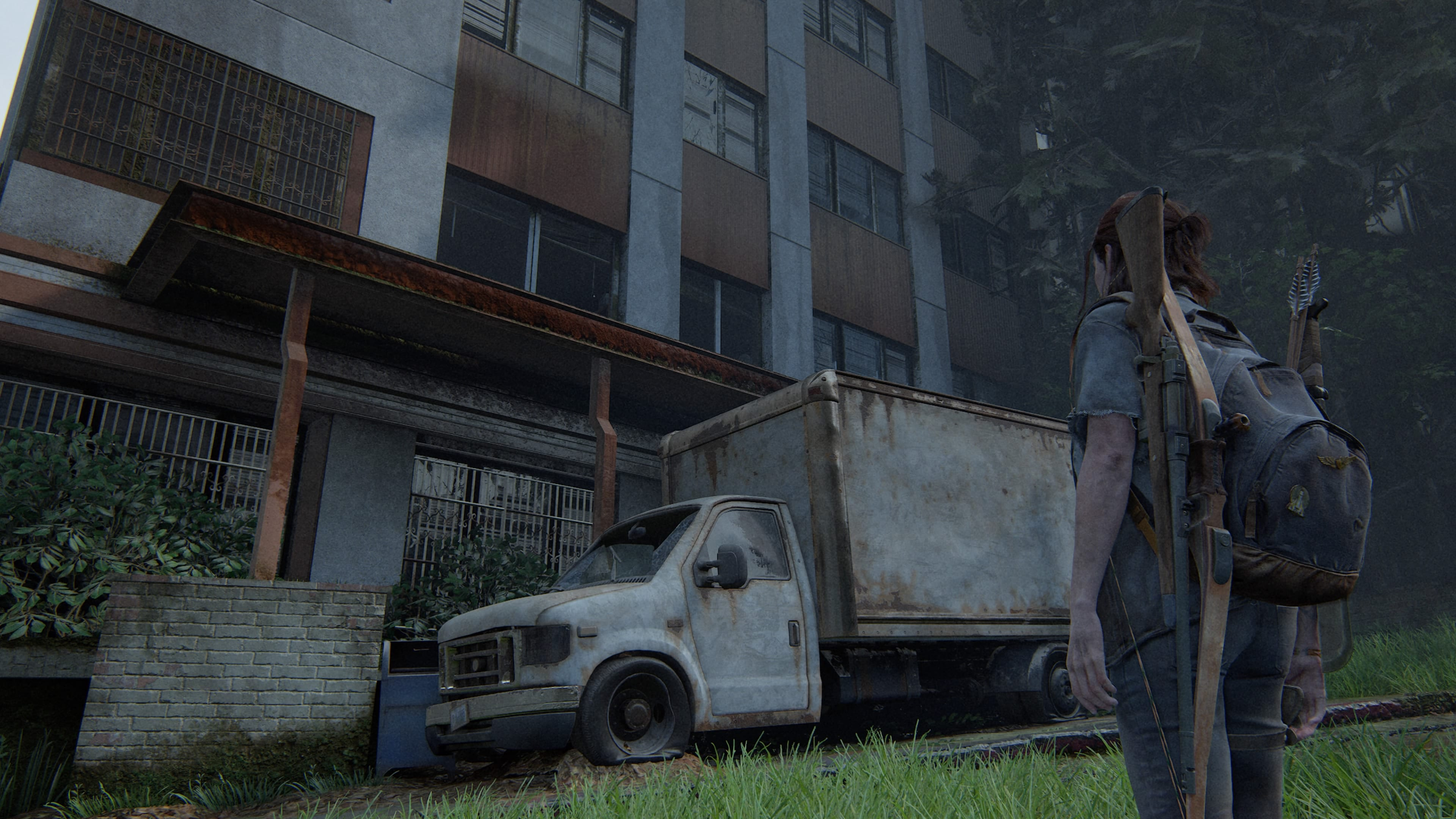 The Last of Us 2 Safe 5