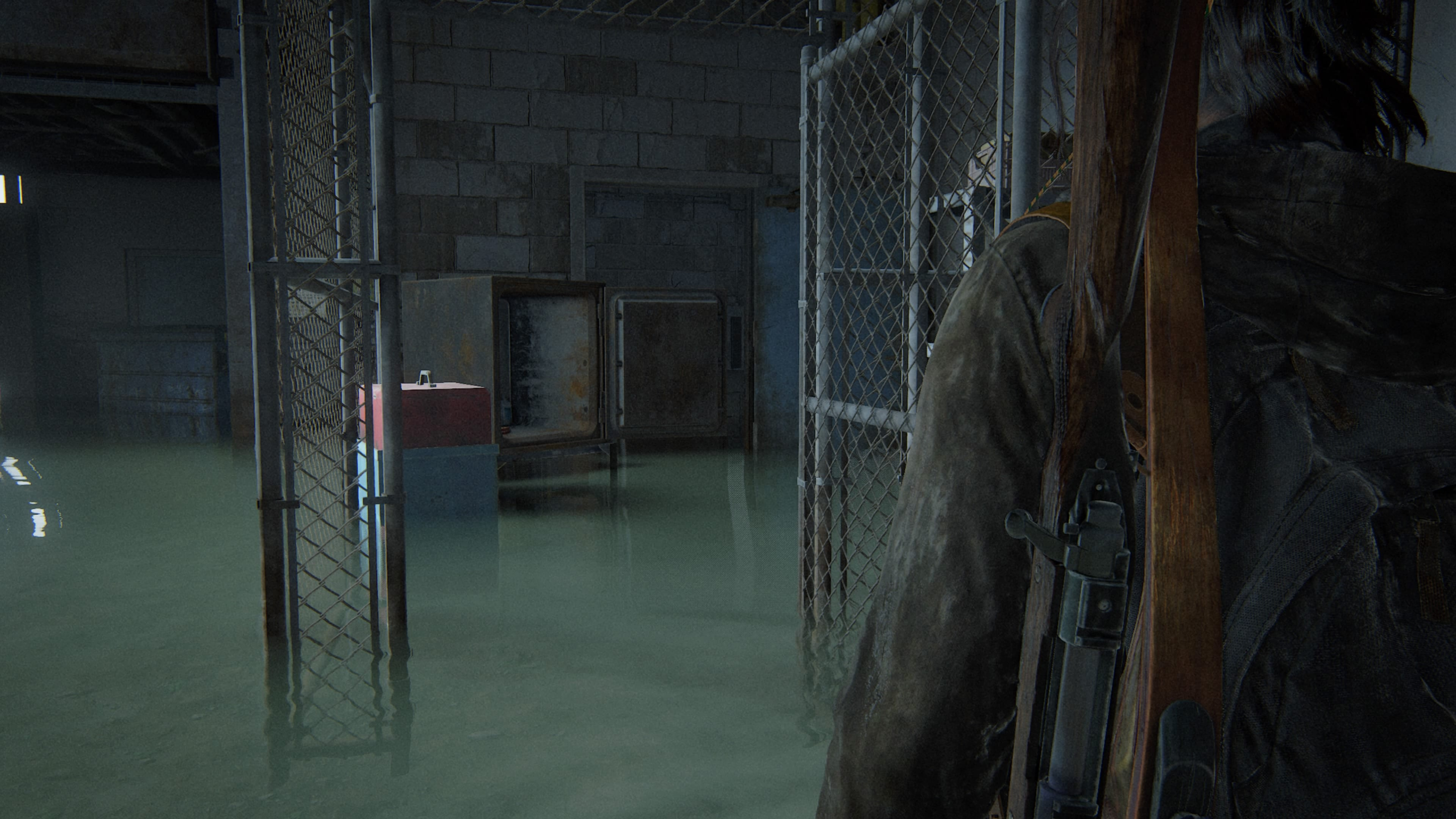 The Last of Us 2 Safe 7