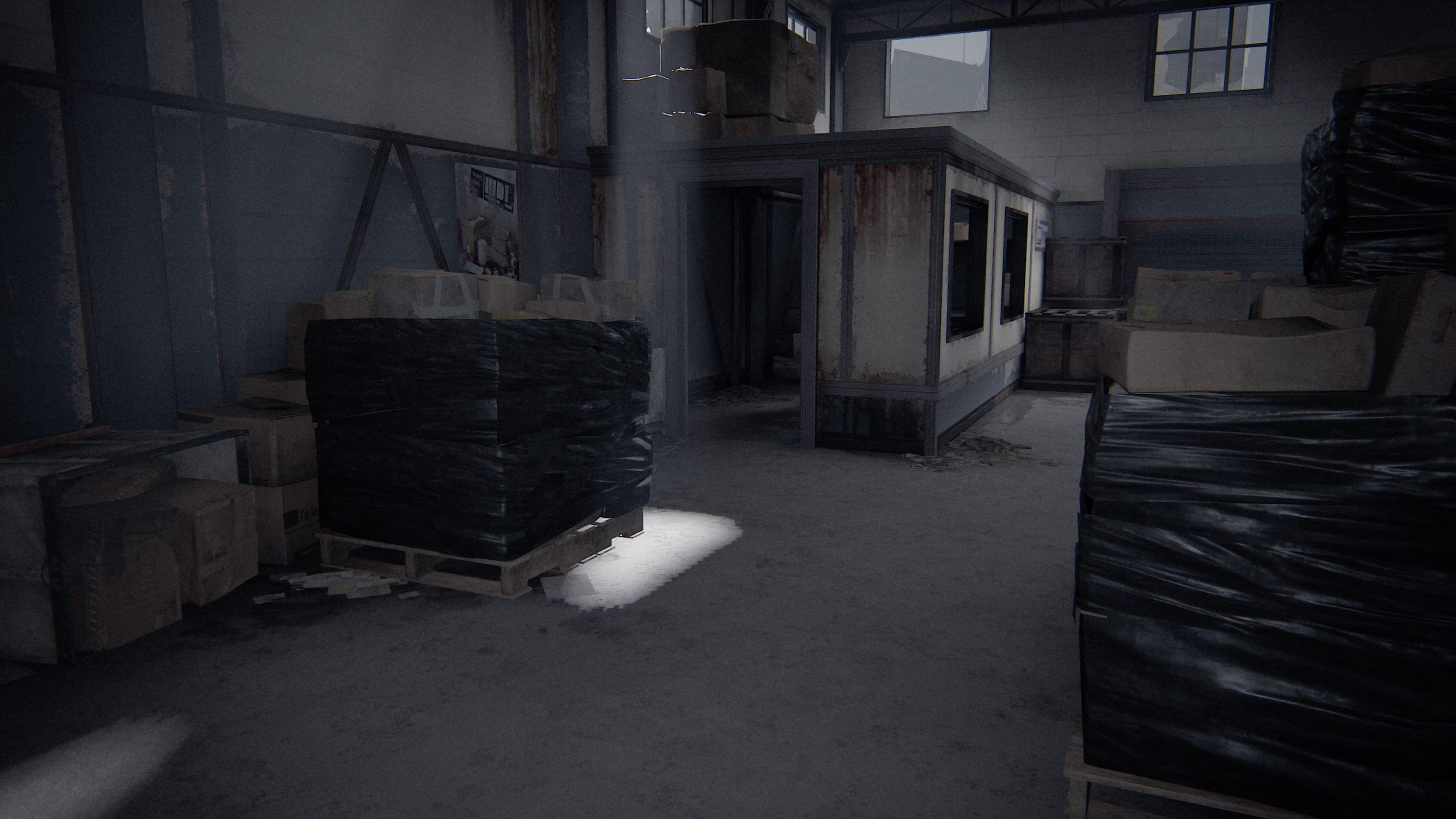 The Last of Us 2 Gewehrholster