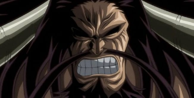 Kaido aus One Piece (Anime)