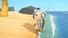 Animal Crossing New Horizons Seebarsch