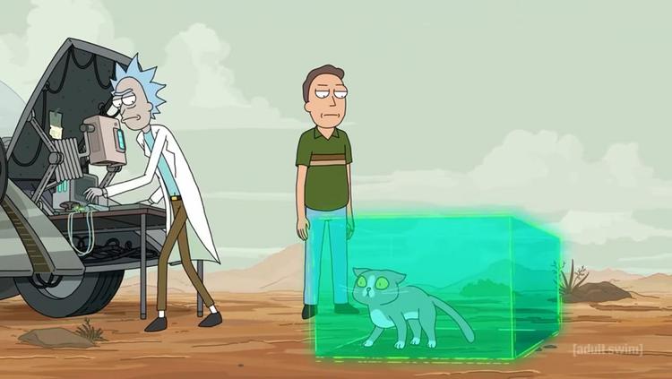 Rick & Morty Katze Lösung