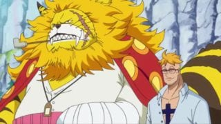 One Piece: Haki erhält neuen Namen und Ruffy neuen Lehrer