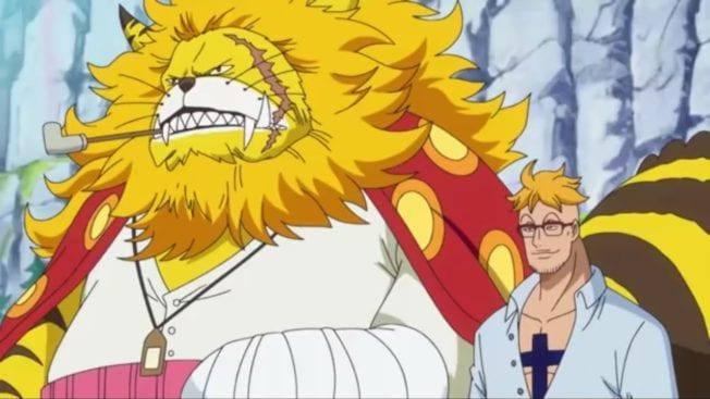Nekomamushi, Marco, One Piece, Anime