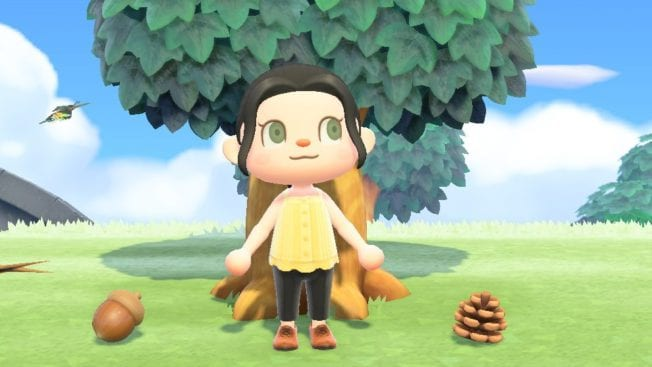 Animal Crossing New Horizons Eicheln Zapfen