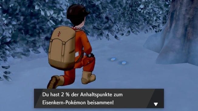 Pokémon Schwert Schild DLC Fußspuren