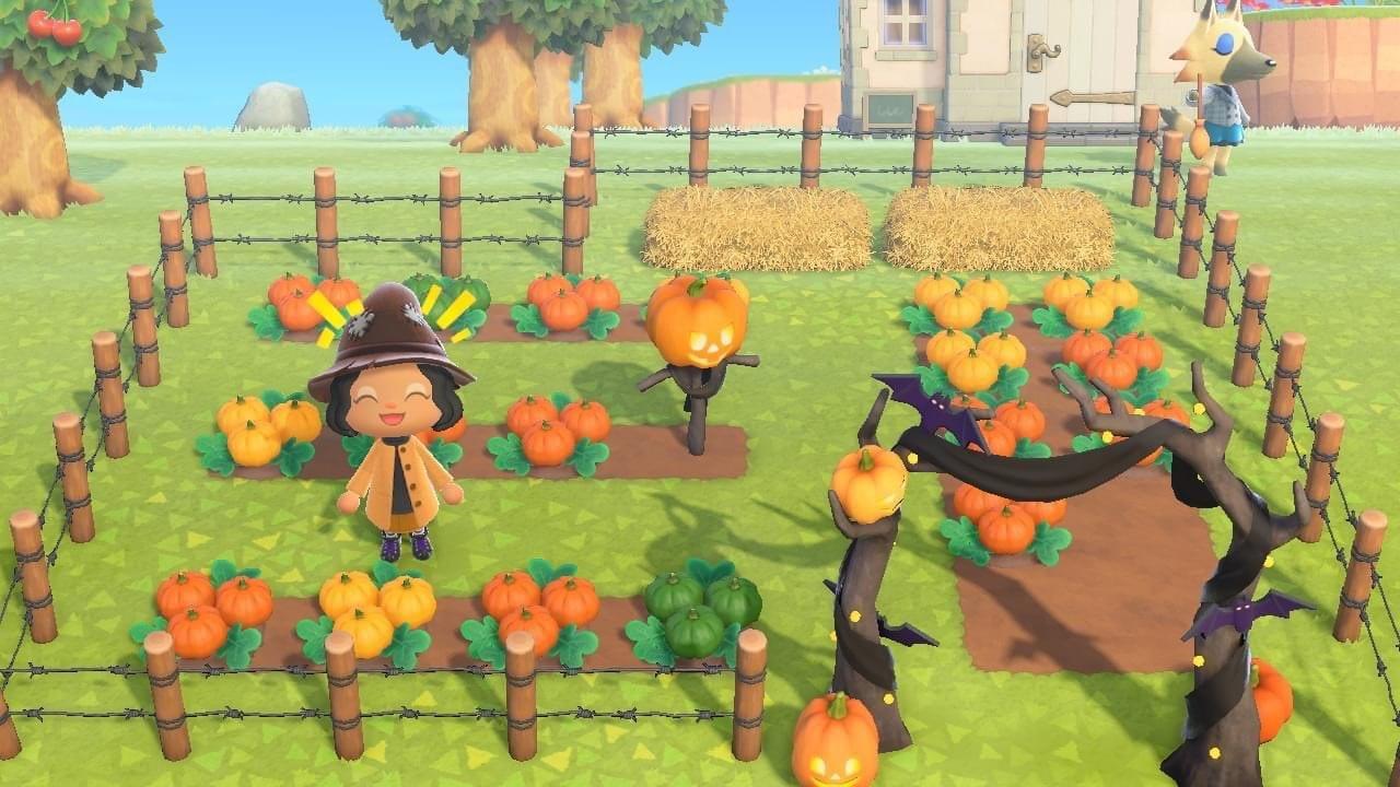 Animal Crossing New Horizons Kürbisse anbauen Farben