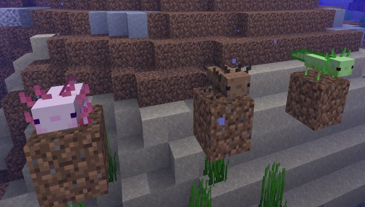 Minecraft Cliff and Cave Update Axolotls