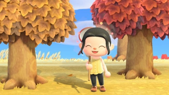Animal Crossing New Horizons Herbstblätter Saison ACNH Rezept