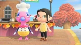 Animal Crossing: Letzte Chance auf diese Insekten, Fische und Meerestiere!