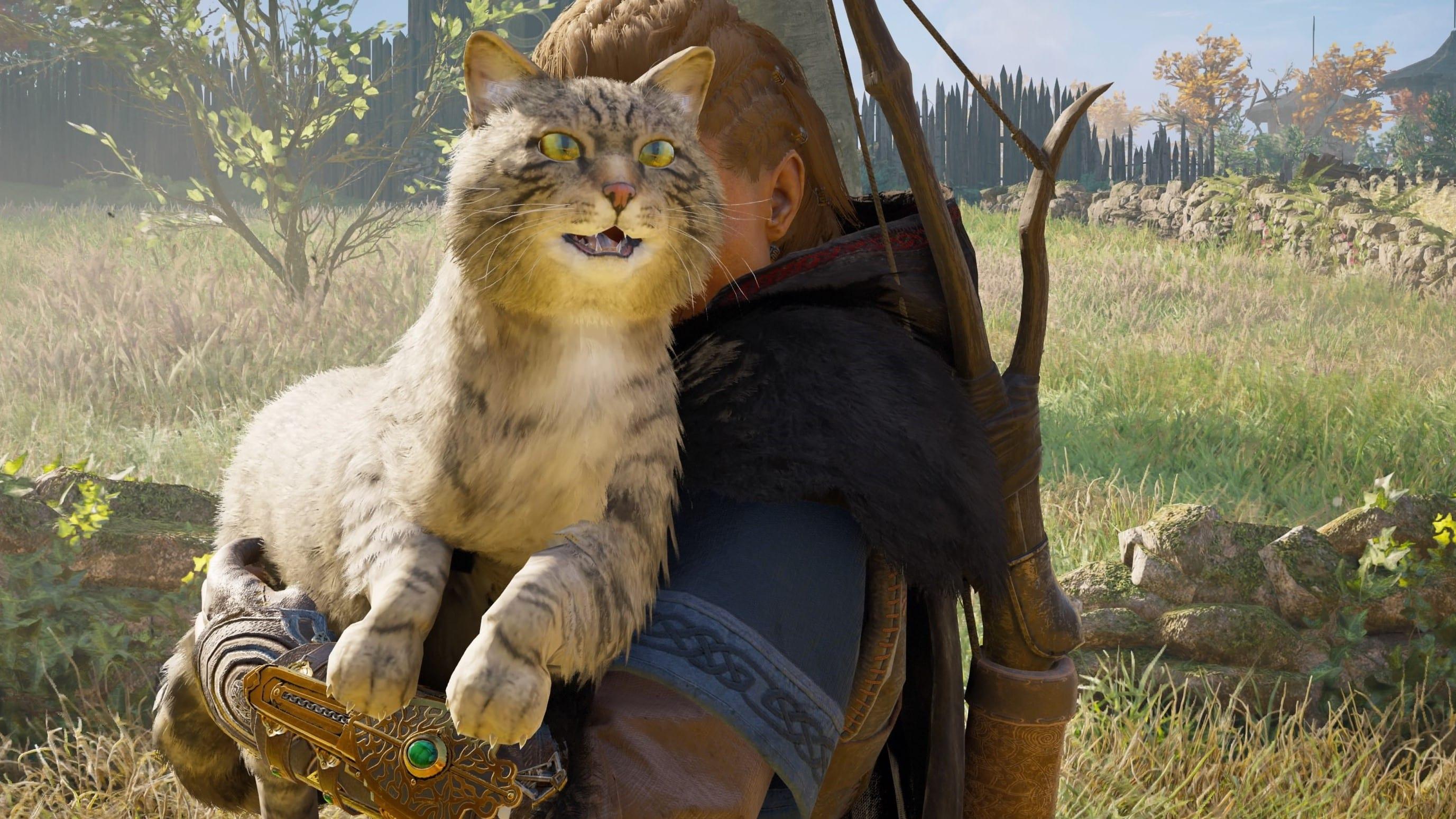 Assassin's Creed Valhalla Katze Langboot Crew