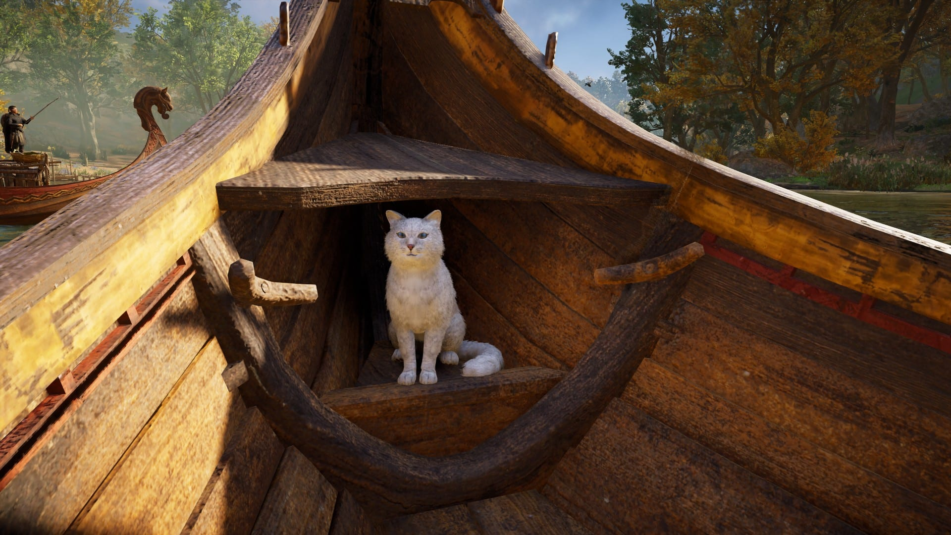 Assassin's Creed Valhalla - Katze in Langboot