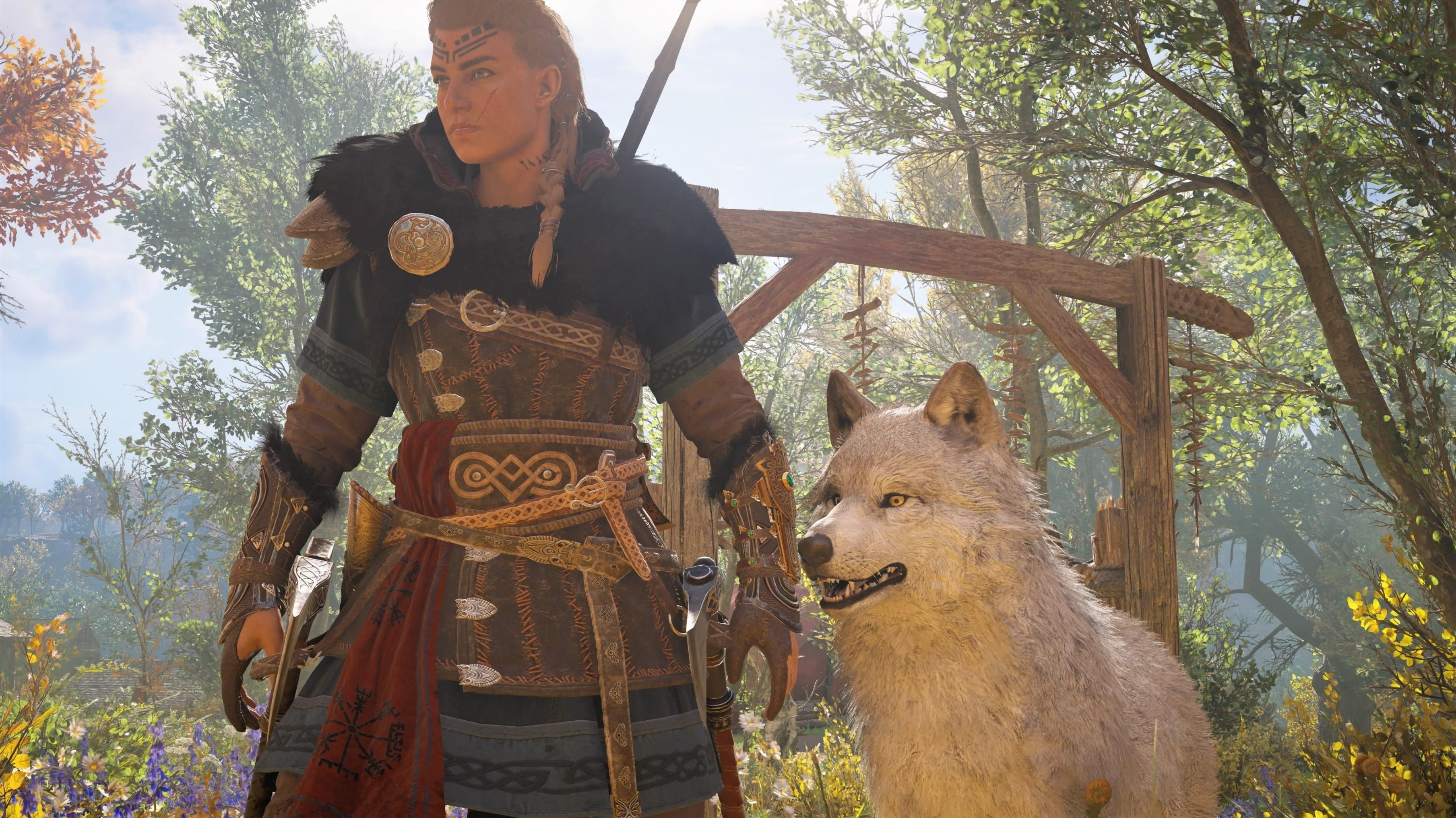 Assassin's Creed Valhalla Wolf Begleiter Tier zähmen