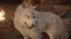 Assassin's Creed Valhalla Wolf freischalten