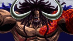 One Piece Kaido Teufelsfrucht