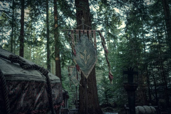 The Witcher 2 Scoia'tael  Flagge