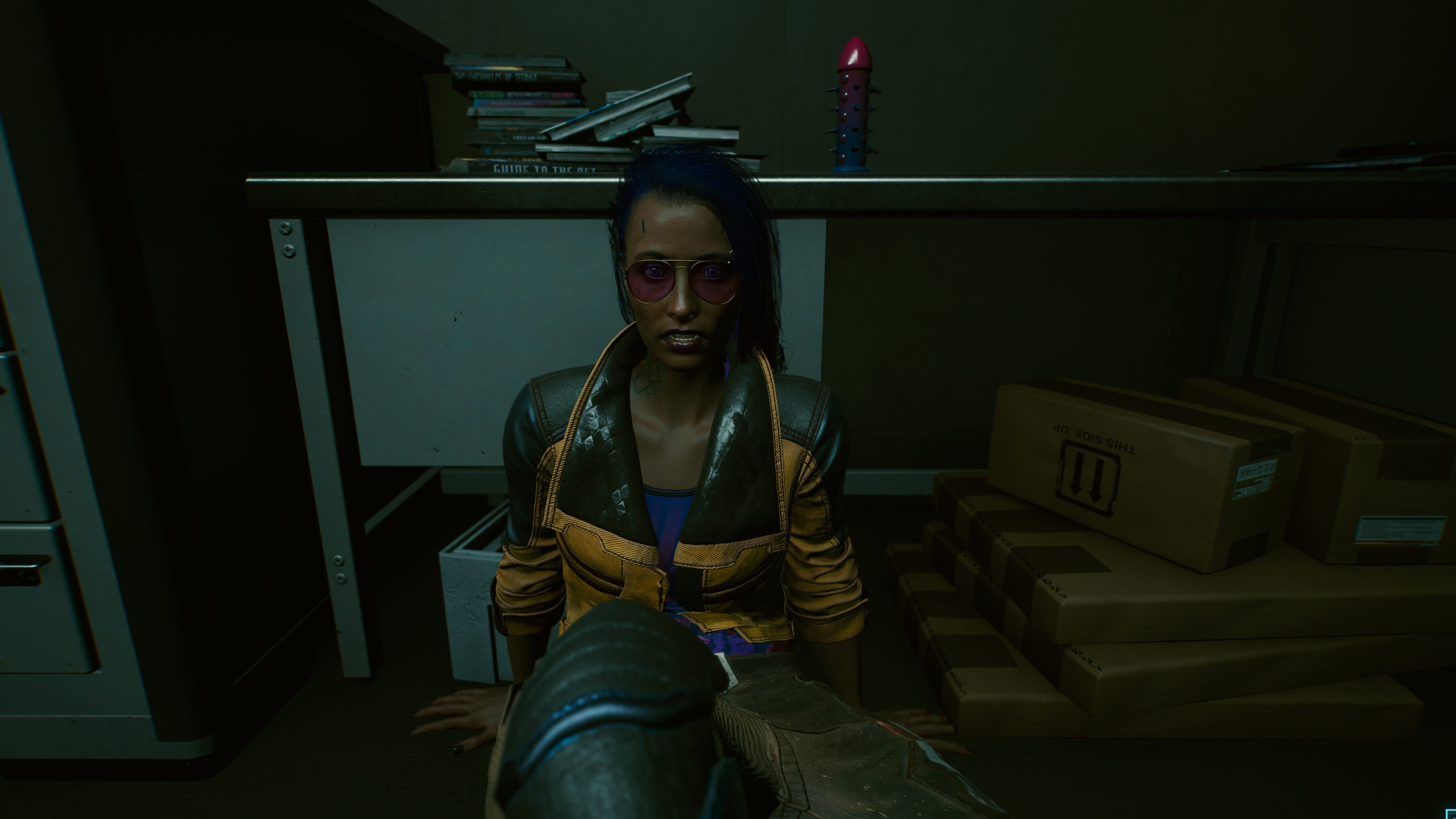 Cyberpunk 2077 - Dildos - Bild 2