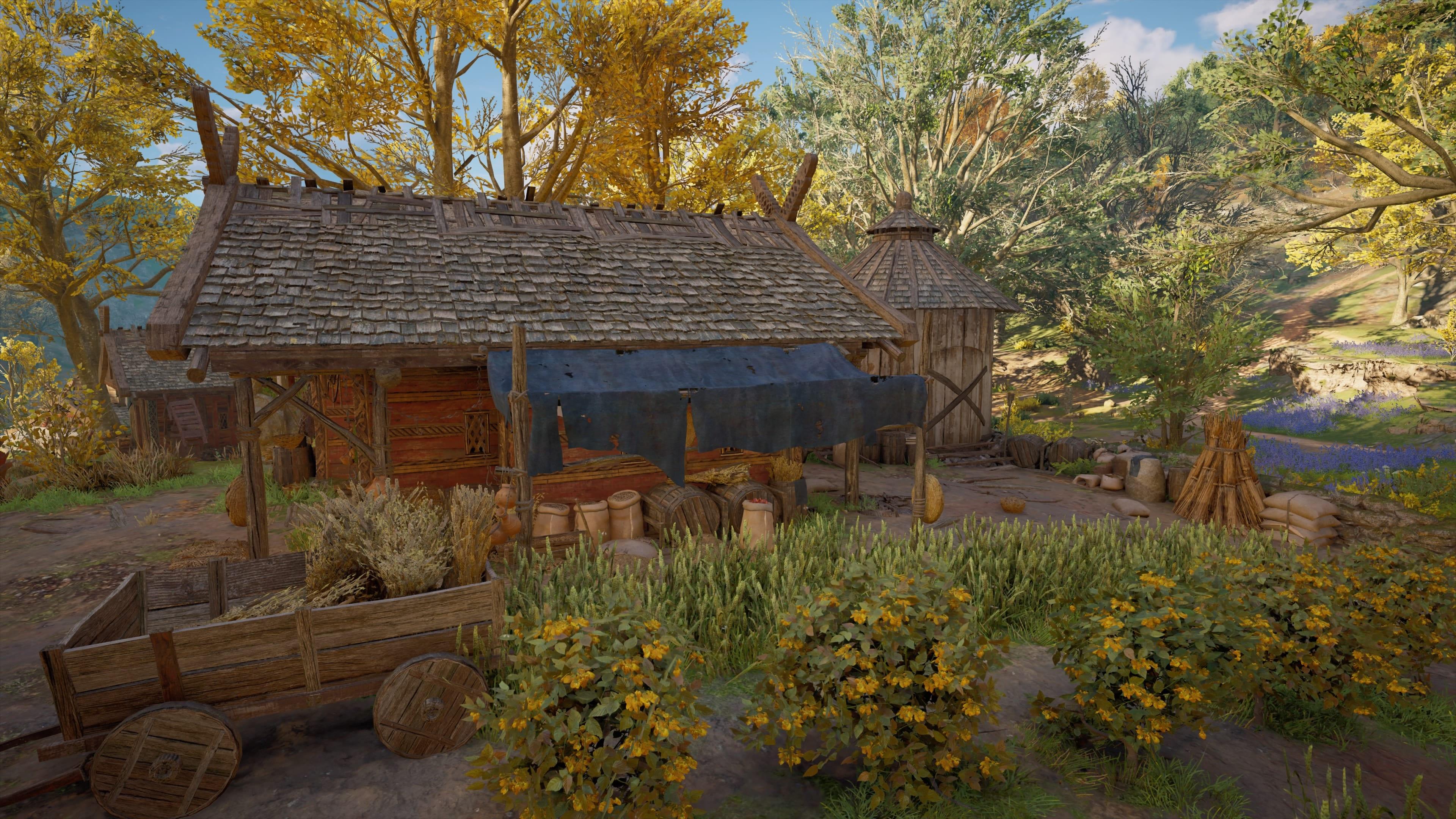 Assassin's Creed Valhalla Getreidefarm