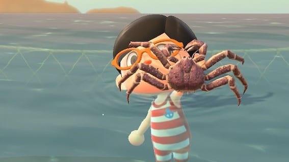 Animal Crossing New Horizons Januar neue Tiere