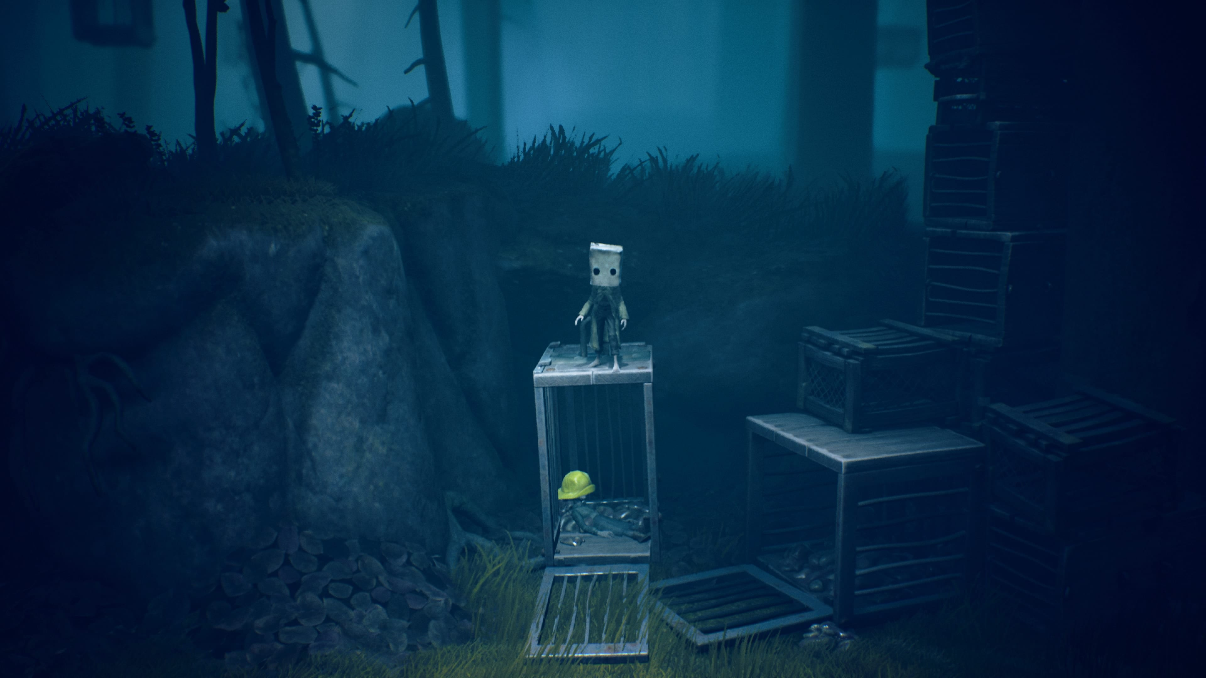 Little Nightmares 2 Kisten Wald