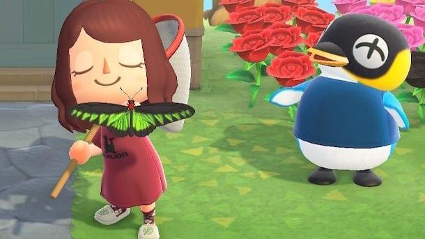 Animal Crossing New Horizons Februar März Tiere
