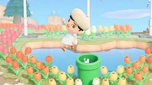 Animal Crossing New Horizons Pipe-Challenge