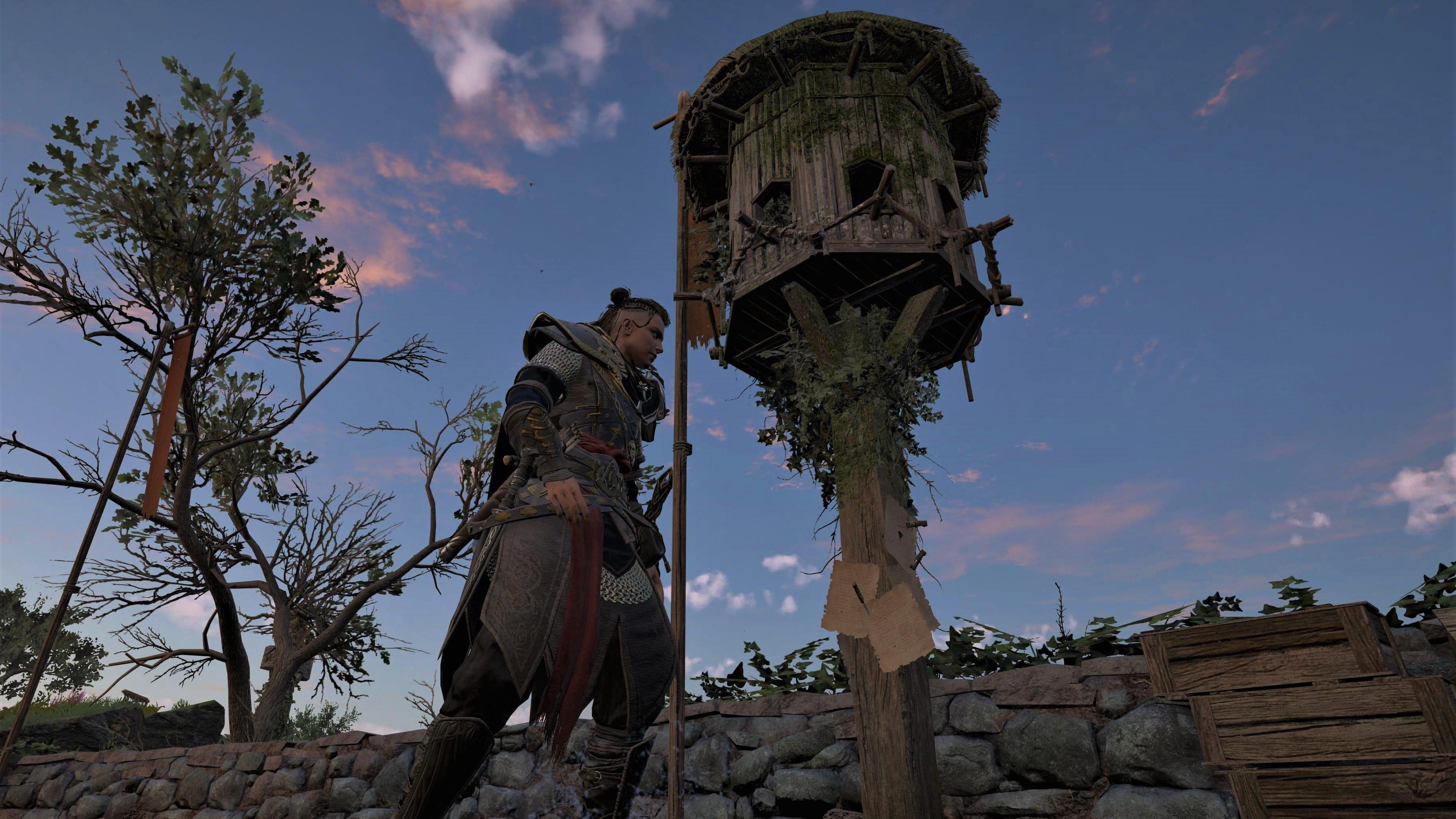 Assassin's Creed Valhalla Taubenschlag