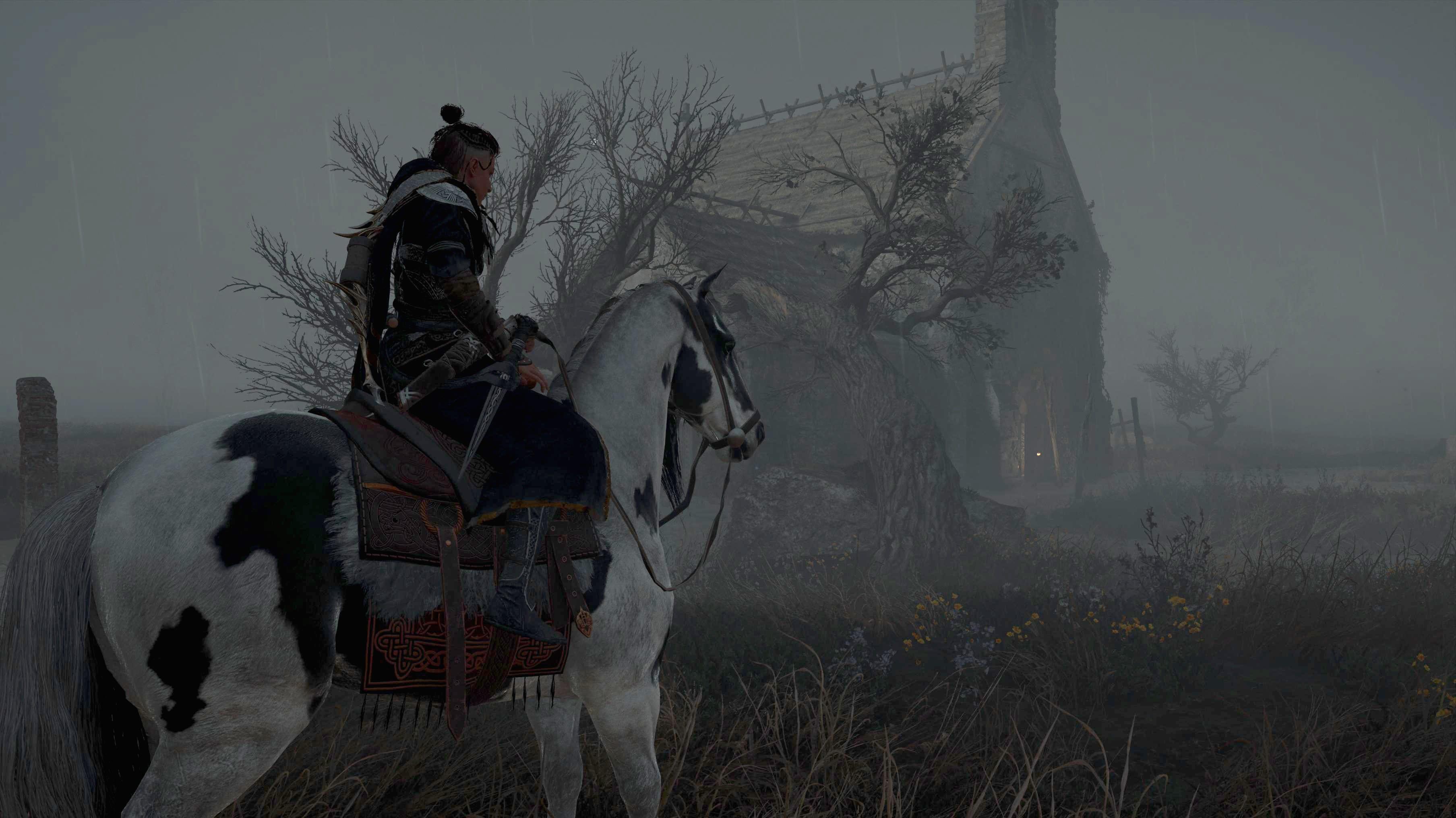 Assassin's Creed Valhalla Schlange Irland