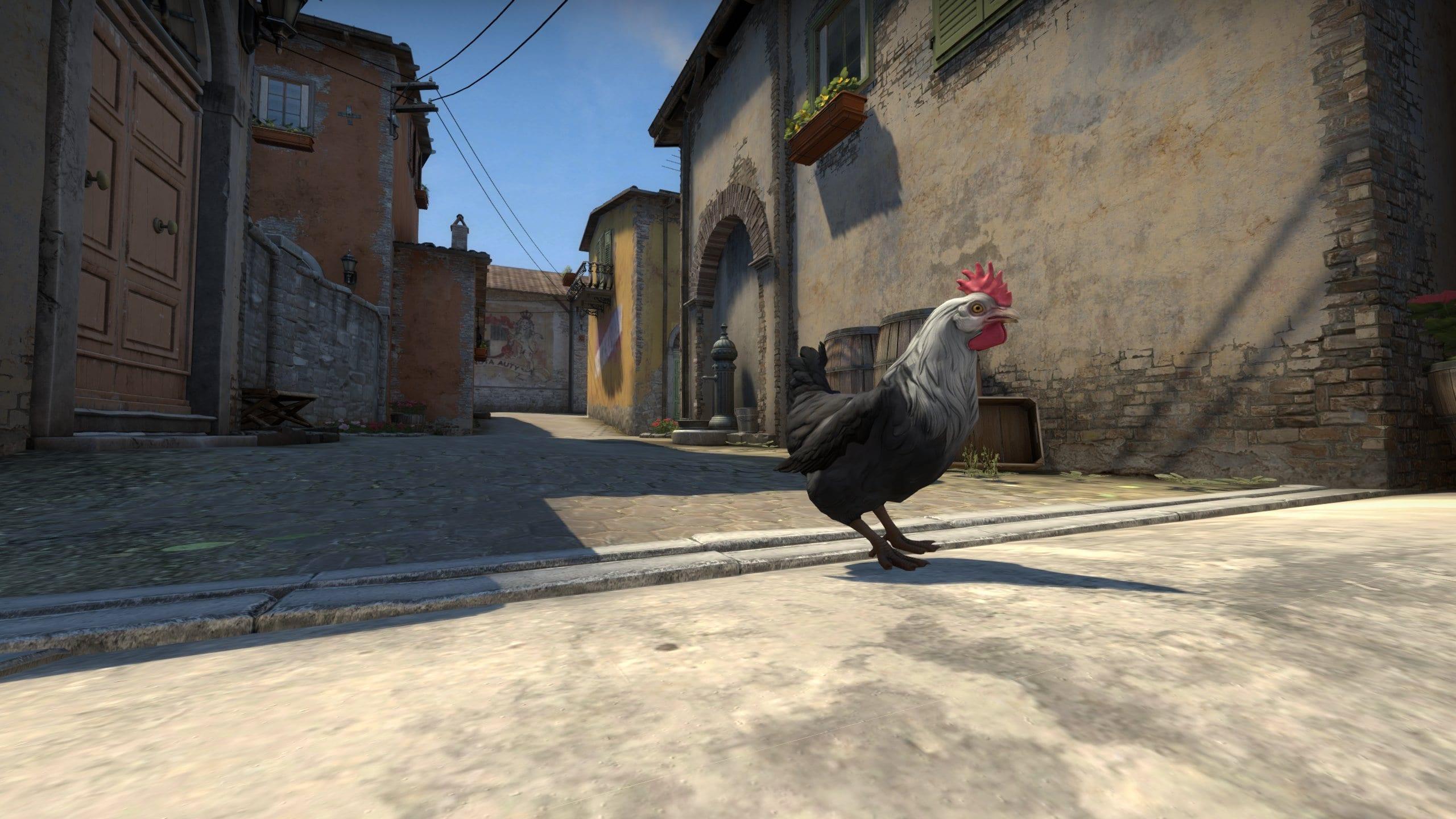 CS:GO neue Chicken Hühner