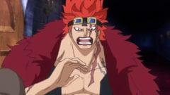 One Piece Kid Teufelsfrucht