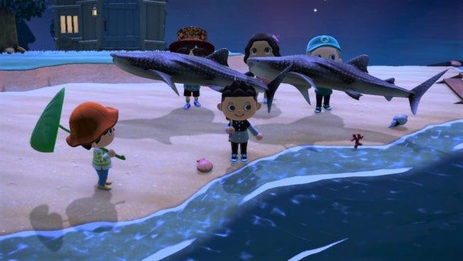 Animal Crossing New Horizons Tiere Juni