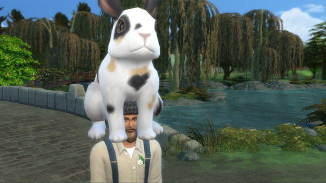 Sims 4 Landhaus-Leben Cheats