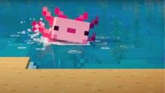 In Minecraft gibt es jetzt auch Axolotl