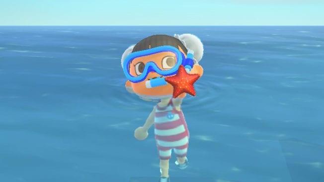 Animal Crossing Meerestiere Preis Uhrzeit